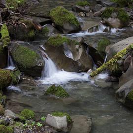 Dana Crandell - Harper Creek