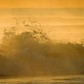 Dianne Cowen - Haunting Sea Smoke