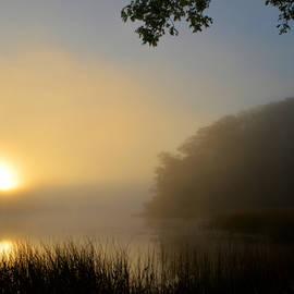 Dianne Cowen - Haunts of Mist