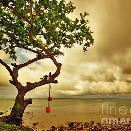 Von McKnelly - Hawaii Beach Tree