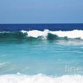 Marsha Heiken - Hawaii Waves