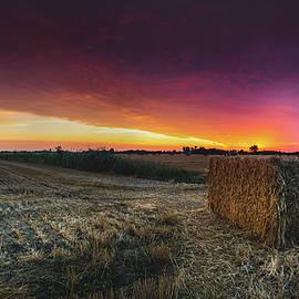 Hay at Sunrise - Panorama - Cale Best