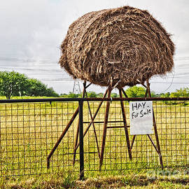 Gary Richards - Hay for Sale