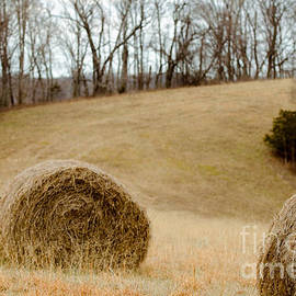 Victoria Lawrence - Hay on the Hills l