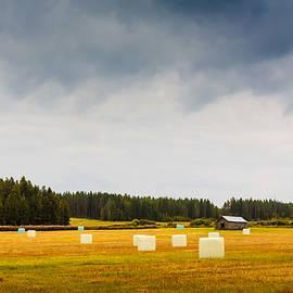 Jukka Heinovirta - Hay Rolls On The Autumn Field