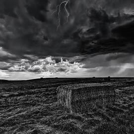 Hay Storm Black and White - Mark Kiver