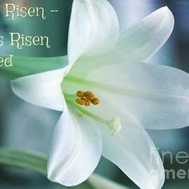 Diann Fisher - He Is Risen Easter Celebration