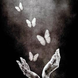Photodream Art - Healing