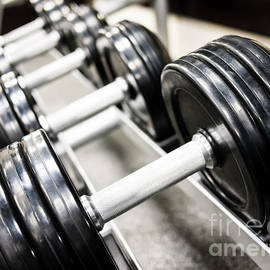 Healthclub Free Weights on a Rack - Paul Velgos