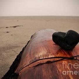 Sarah Labadie - Heart of Stone on Driftwood