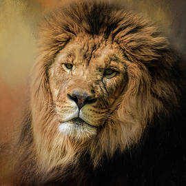 Jai Johnson - Heat Wave Lion Art by Jai Johnson