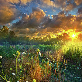 Phil Koch - Heaven Knows