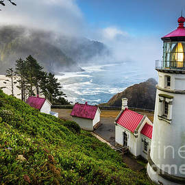 Inge Johnsson - Heceta Fog
