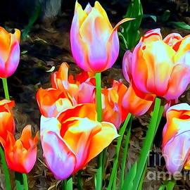 Ed Weidman - Hecksher Tulips #7