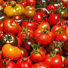 Joe Schofield - Heirloom Tomatoes Summer  2016