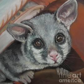 Dianne  Ilka - Hello Possum