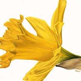 Sarah Batalka - Herald Of Spring