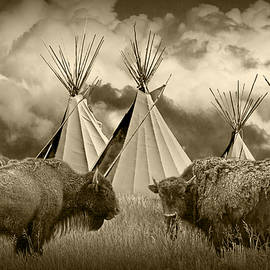 Randall Nyhof - Herd of Buffalo and Teepees of the Blackfoot Tribe