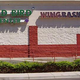 Hank Lerma - Here Birdie Birdie