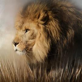Jai Johnson - Here Comes The King