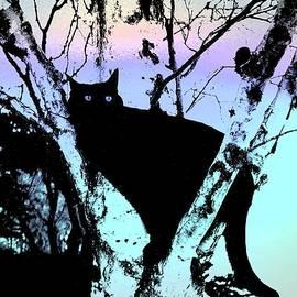 Shirley Sirois - Here Kitty Kitty