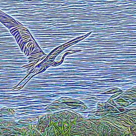 Joel Bruce Wallach - Heron Heavenwards