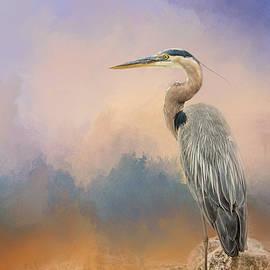 Jai Johnson - Heron On The Rocks