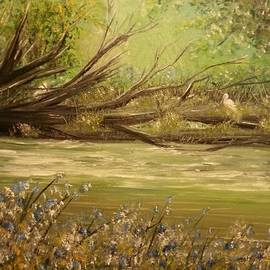 Delia Birnhak Swenson - Herons Perch