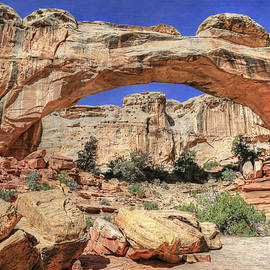 Donna Kennedy - Hickman Natural Bridge - Capital Reef