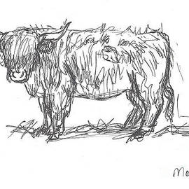 Dawn Senior-Trask - Highland Cow field sketch