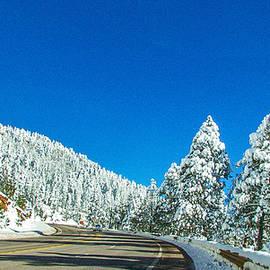 Barbara Zahno - Highway To Northern Arizona