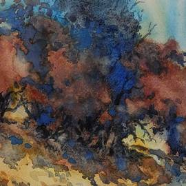 Virgil Carter - Hill Country Exploration No 2