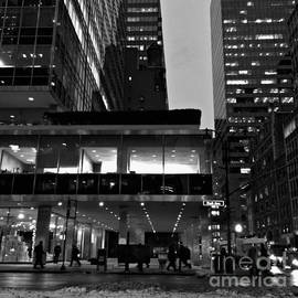 Miriam Danar - Historic Lever House - New York City