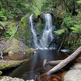 Tony Crehan - Hogarth Falls - Tasmania
