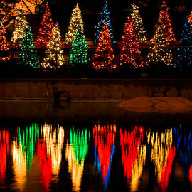 Nancy Mueller - Holiday Evergreen Reflections