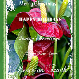 Mother Nature - Holiday Greeting Card - Joy To The World