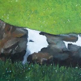 Joyce Geleynse - Holstein Cow In Sunshine