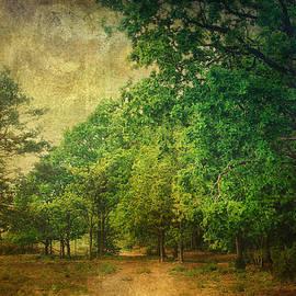Julie Coe - Holt Country Park 4