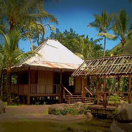 Lori Seaman - Home in the Tropics