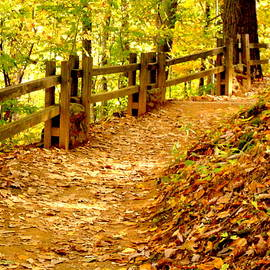 Arlane Crump - HOMETOWN Series - A Day of Hiking