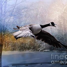 Linda Troski - Honking Goose