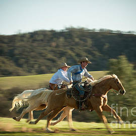 Horse Race - Ana V  Ramirez