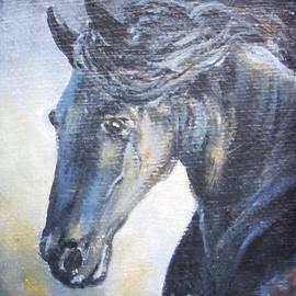Vesna Martinjak - Horse