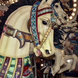 Sue Rosen - Horses