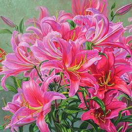 Fiona Craig - Hot Pink Asiatic Lilies