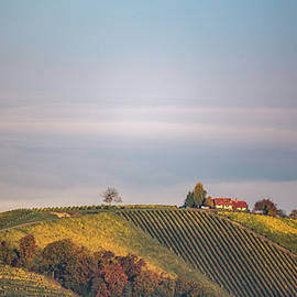 House on top of the hill - Davorin Mance