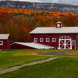 Susan Candelario - Hudson Valley NY Countryside