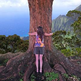 Joseph J Stevens - Hug Hawaii