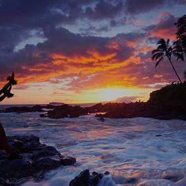James Roemmling - Hula Sunset