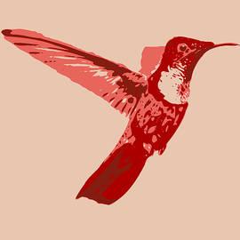 Keshava Shukla - humming bird Contours